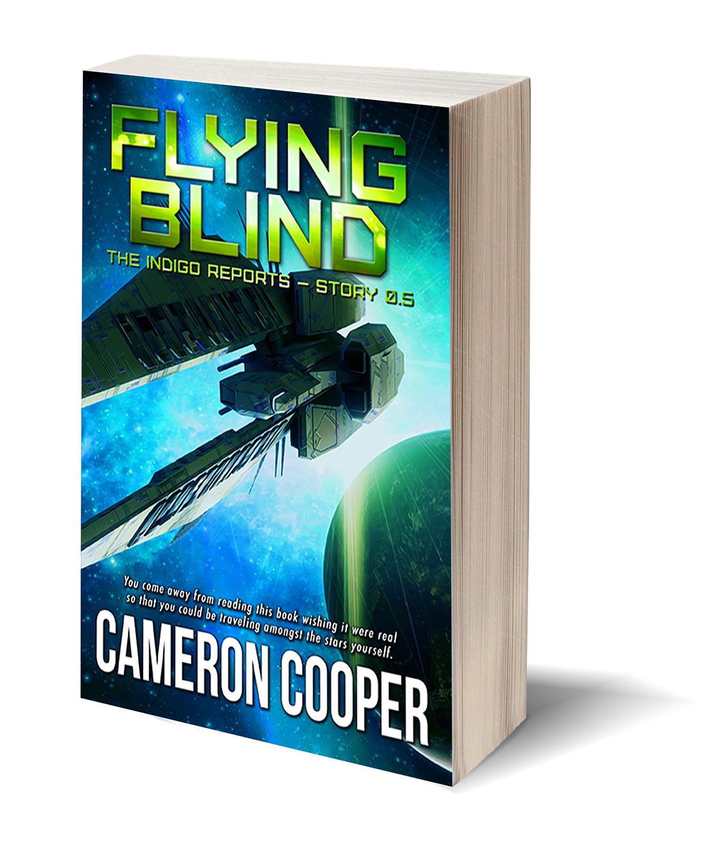 Flying Blind Cover
