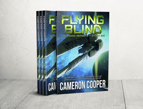 FLYING BLIND now available for Pre-Order